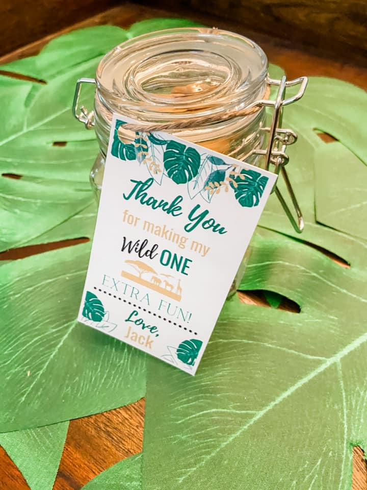 WILD ONE SAFARI PARTY FAVORS